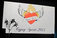Předávání cen Gypsy Spirit za rok 2013 (Foto: Kristýna Maková)