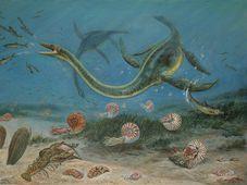 Плезиозавр. Картина, автором которой является художник Петр Mодлитба. (Фото: Архив Природоведческого факультета Карлова университета)