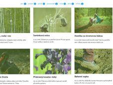 Web Minuty z přírody (www.minutyzprirody.cz) je určen jako inspirace pro zájmové aktivity dětí v přírodě