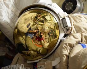 Paolo Nespoli (Foto: Randy Bresnik, NASA, Public Domain)