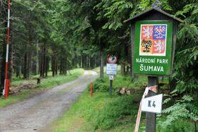 Nationalpark Šumava (Foto: Filip Jandourek, Archiv des Tschechischen Rundfunks)