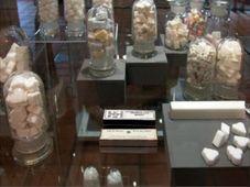 Le musée du sucre à Dobrovice