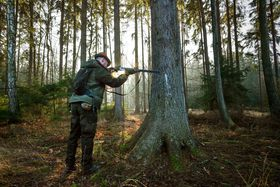 Jagd auf Wildschweine (Foto: ČTK)