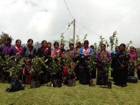 Foto: Archivo de la asociación Amor por Guatemala