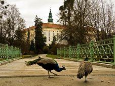 Zámek v Kroměříži, foto: Vít Pohanka