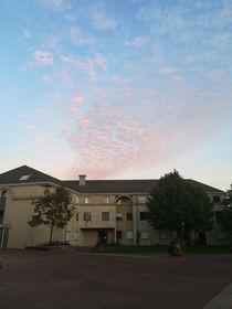 Lycée international Charles de Gaulle de Dijon, photo: Eliška Oplová