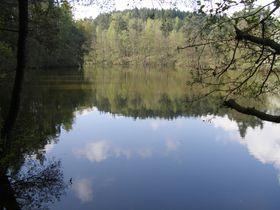Mladotice-See (Foto: Martin Štěpánek, CC BY-SA 3.0)