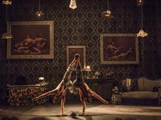 Cirque Le Roux, 'The Elephant in the Room', photo: Francesca Torracchi / Site officiel du festival Letní Letná