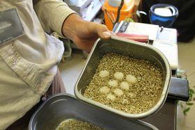 Vajíčka šírohlavce jsou uchovávána ve speciálním substrátu, foto: Ondřej Tomšů