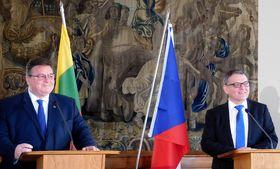 Linas Antanas Linkevičius und Lubomír Zaorálek (Foto: Loreta Vašková)