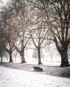 Victoria Park, London, photo: Jiří Šiftař