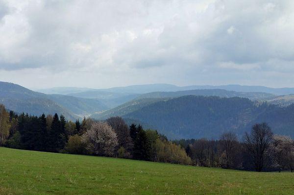 Šumava, photo: Kozuch, CC BY-SA 4.0