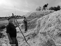 'Le bon fermier', photo: Pierre Jeanmougin
