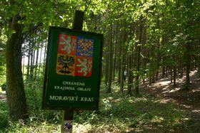 Landschaftsschutzgebiet - chráněná krajinná oblast (Foto: Archiv des Tschechischen Rundfunks - Radio Prag)
