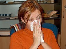 Grippe - chřipka (Foto: František Tichý, Archiv des Tschechischen Rundfunks)