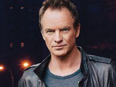 Sting, foto: página web oficial del Metronome Festival Praga