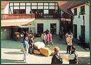 Bunter Markt