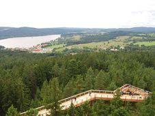Липно и дорожка расположенная на 40-метровой высоте, фото: Richenza CC BY-SA 3.0