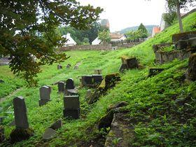 Juedischer Friedhof (Foto: Eva Fréharová)