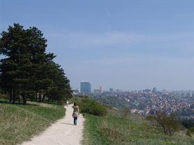 Прокопская долина, Фото: Милош Турек, Чешское радио - Радио Прага