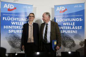 Alice Weidel und Alexander Gauland (Foto: ČTK)
