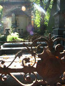 Le cimetières d'Olšany, photo: Štěpánka Budková