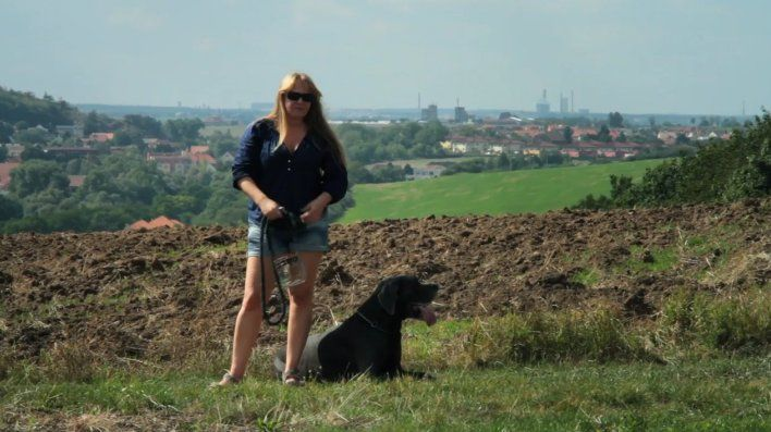 film policier tcheque 2015