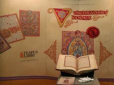 Codex von Vyšehrad (Foto: Martina Schneibergová)