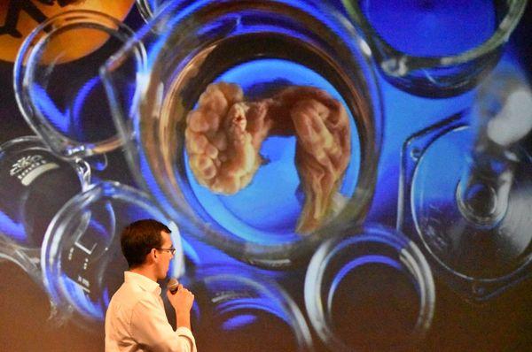 На фестивале выступил и Ян Неворал - глава Лаборатории репродуктивной медицины медицинского факультета  Карлова университета в г. Плзень.  Фото: Эва Туречкова
