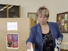 Neuwahlen in Krupka (Foto: ČTK)