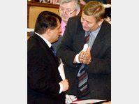 Jiri Paroubek et Miroslav Grebenicek, photo: CTK