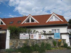 Galerie ,Netopýr' (Foto: Martina Schneibergová)