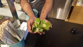 Pan Keny pracuje vthajské restauraci, foto: Klára Stejskalová