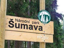 Национальный парк Шумава, Фото: Халил Баалбаки, Чешское радио