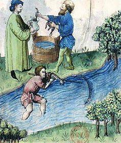 Foto: Wikipedia / free