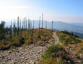 Les monts Beskides, photo: Barbora Němcová