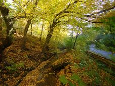 Прокопская долина, Фото: Aktron, CC BY 3.0