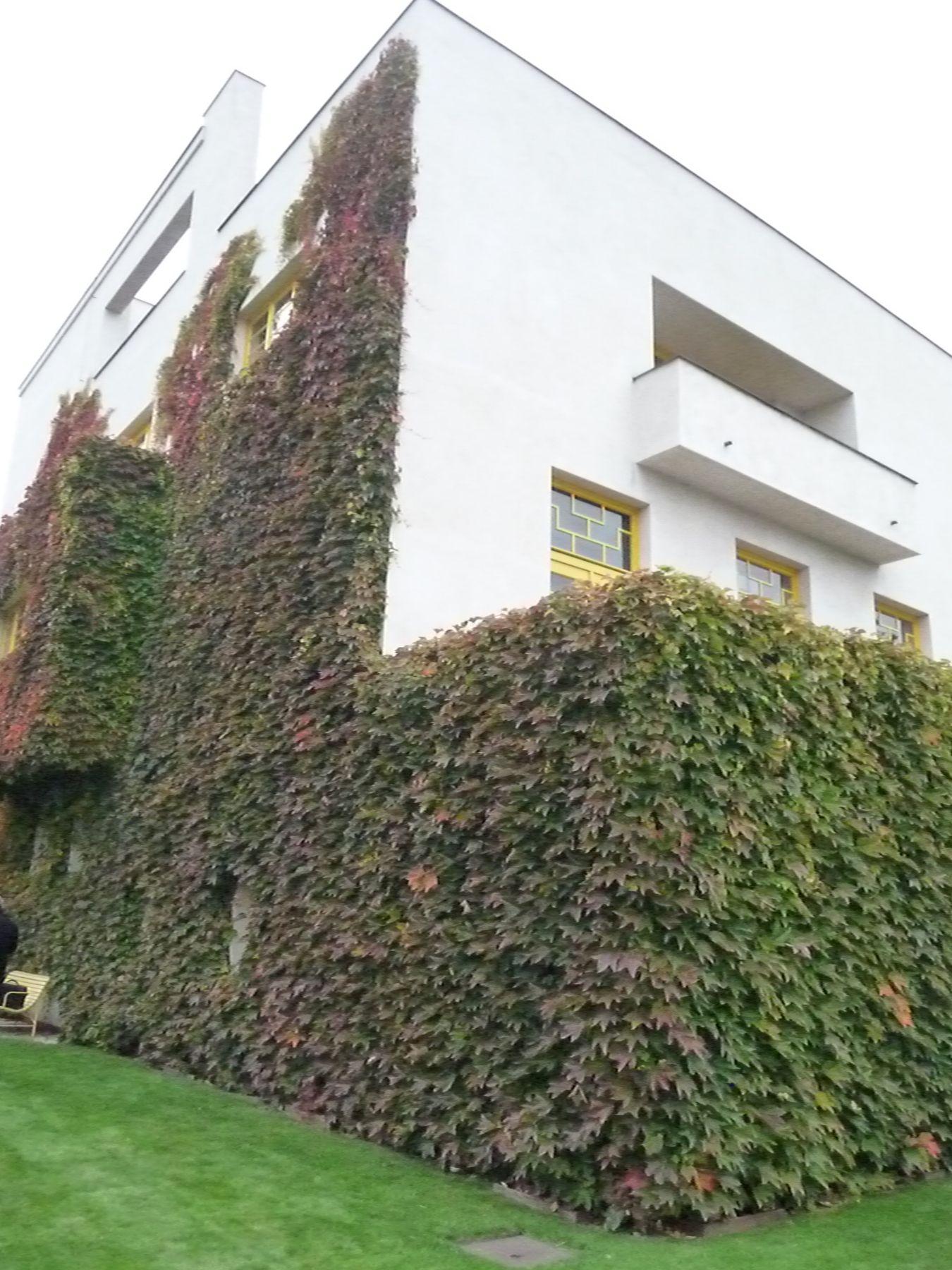 auszeichnung garten der villa m ller erhielt den preis bauen mit gr n radio prag. Black Bedroom Furniture Sets. Home Design Ideas