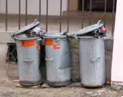 Třídit odpad se Češi učí pomalu...