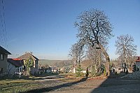 Číhošť (Foto: Prazak, Wikimedia CC BY-SA 3.0)