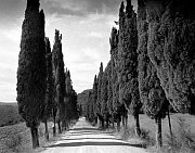 Tuscany, photo: Antonín Kratochvíl