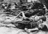 Oběti koncentračního tábora Osvětim (Foto: United States Holocaust Memorial Museum)