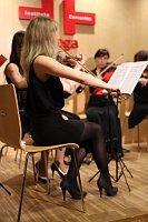 La Orquesta de Cámara del Instituto Cervantes, foto: Página de Facebook Oficial de la orquesta
