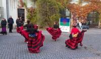 Den romského jazyka na nádvoří Ústřední knihovny Univerzity Palackého v Olomouci, tzv. Zbrojnici (Foto: Charita Olomouc)