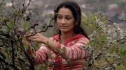 Z filmu Cigán (Foto: Bontonfilm)