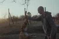 Marek a jeho pes ve filmu Můj pes Killer (Foto: www.mirafox.sk)