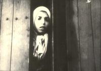 Romská dívka Settela Steinbach při transportu z Nizozemska do Osvětimi