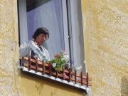 Soutěž o nejkrásnější rozkvetlé okno (Foto: www.cesky-zapad.cz)