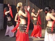 Taneční soubor V. I. P. z Dobré Vody (Foto: www.cesky-zapad.cz)