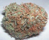 Marihuana, photo: Free Domain